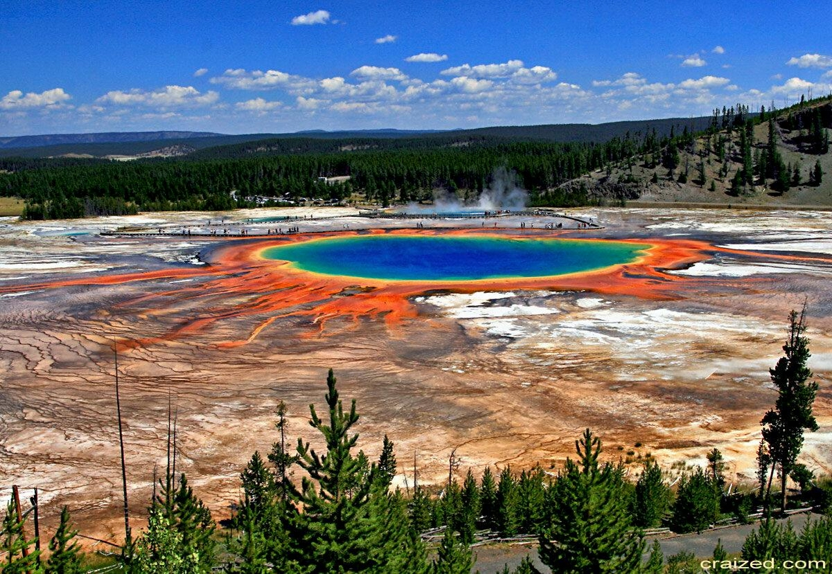 MULTICOLORED POND - with credits