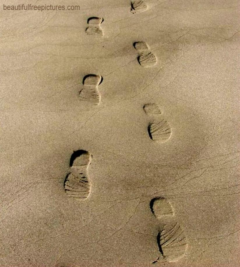 BEACH PRINTS REDDER