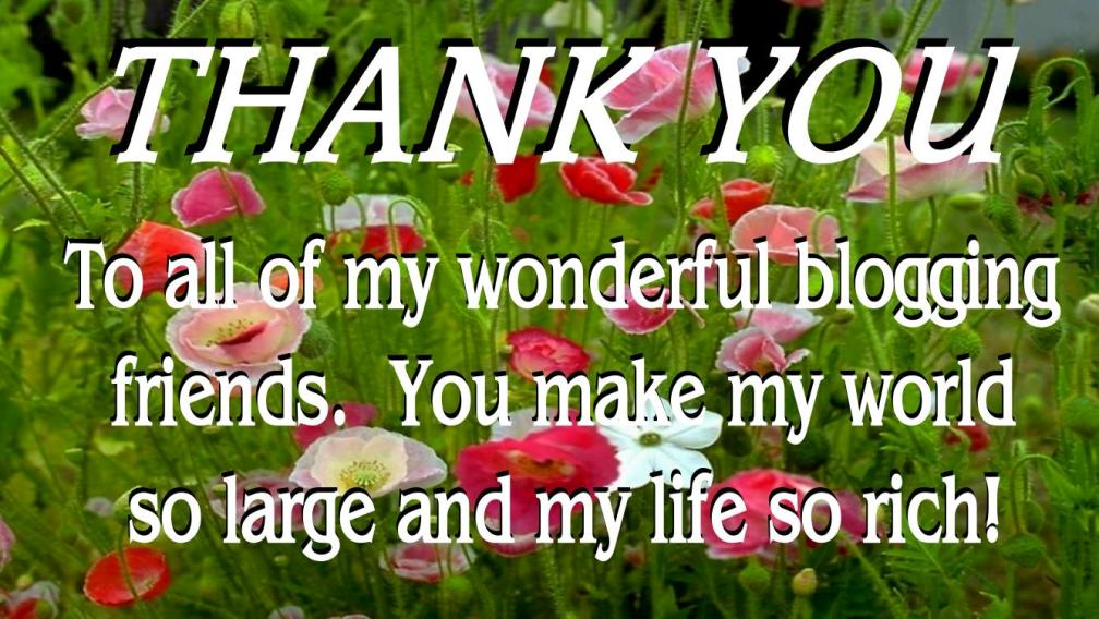 WILDFLOWERS FOR THANK YOU NOTE