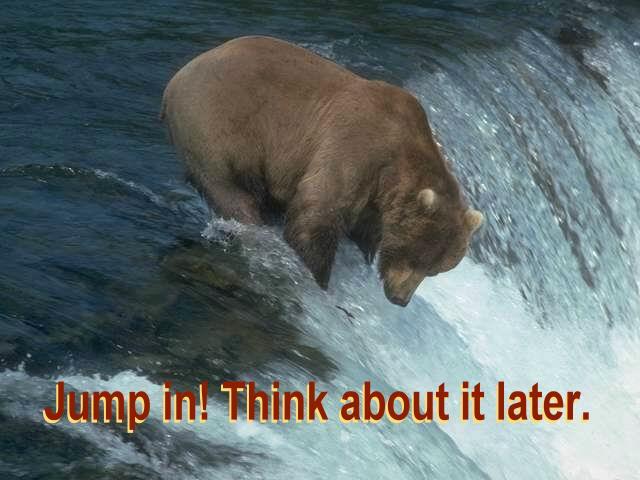 BEAR AT FALLS WITH TEXT