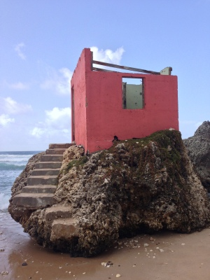 PINK BUILDING ON THE SEA - FF