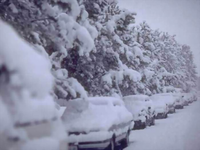 STALLED CARS BY SNOWY WOODS - lighter