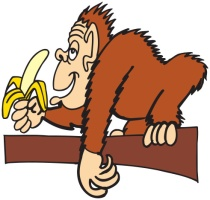 APE WITH BANANA - WP CLIPART