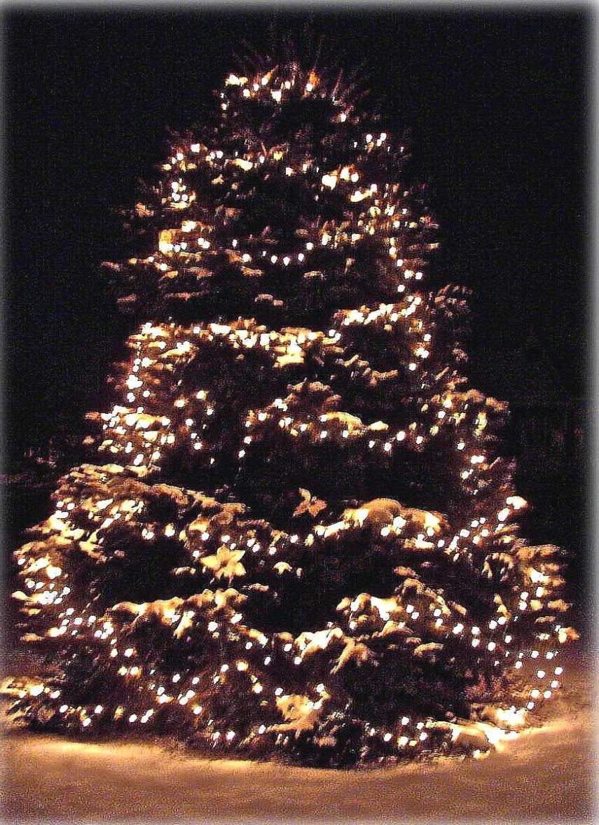 CHRISTMAS TREE - GOLD - sharp edge - brighter