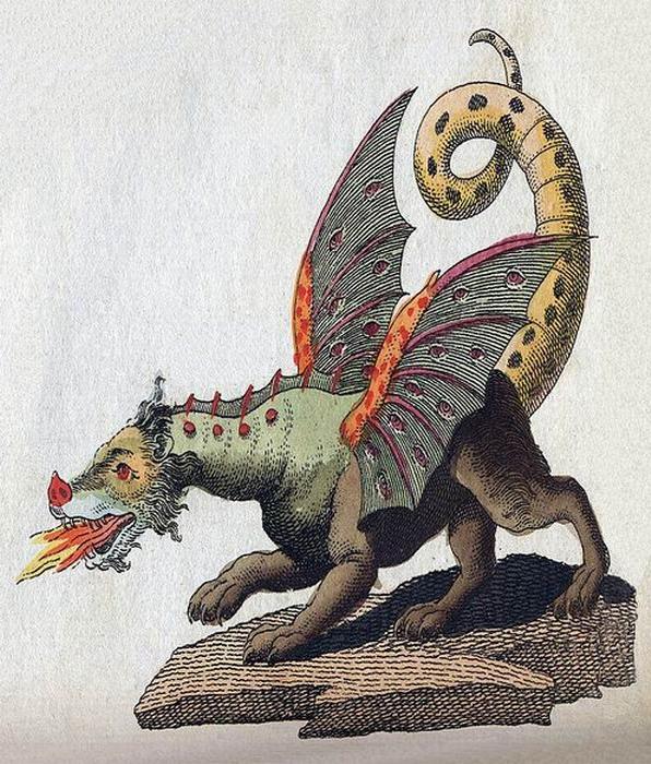 DRAGON - PUB DOM TOTALLY -- Friedrich-Johann-Justin-Bertuch_Mythical-Creature-Dragon - TALL