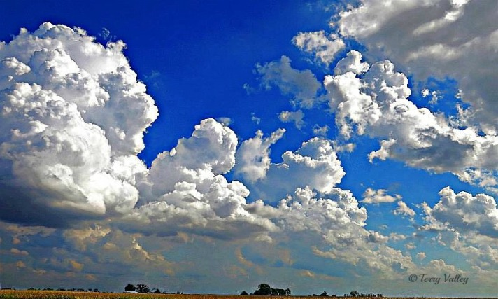 CLOUDS & CORNFIELD - TERRY cropped for top
