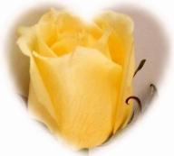 YELLOW ROSE CAMEO HEART smaller