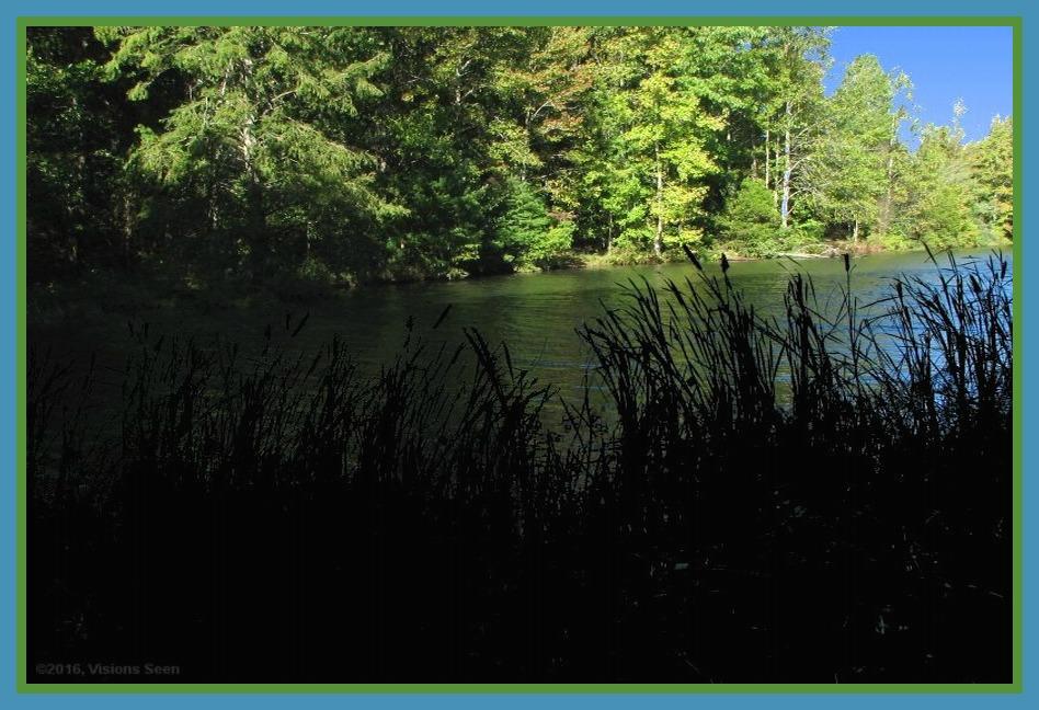 cattails-on-lake-widened-framed