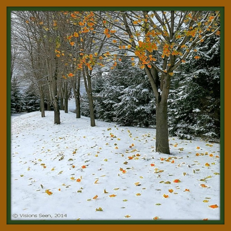 fall-leaves-snow-enlarged