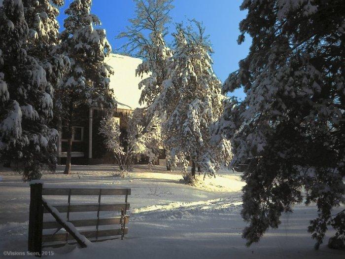 wake-up-to-winter