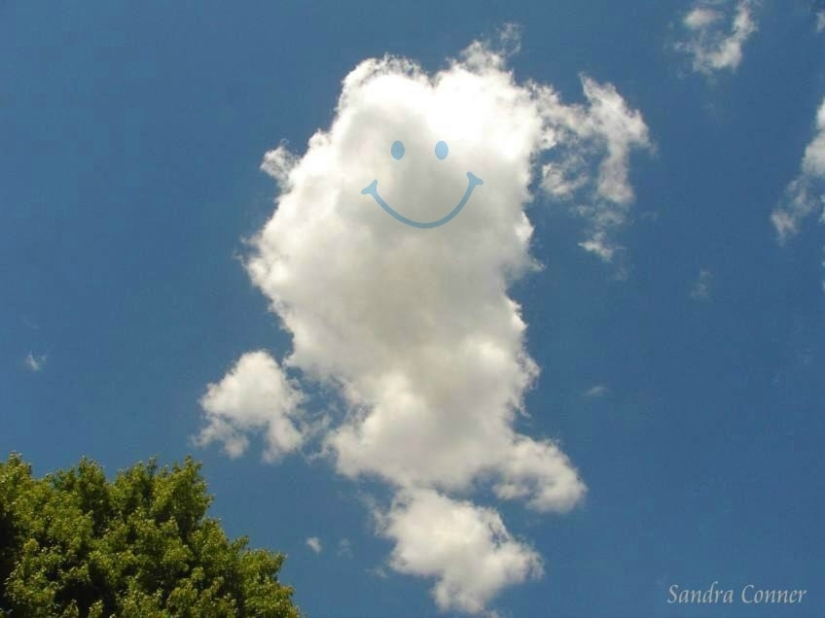 CLOUD - FLUFFY - SINGLE -w. smiley