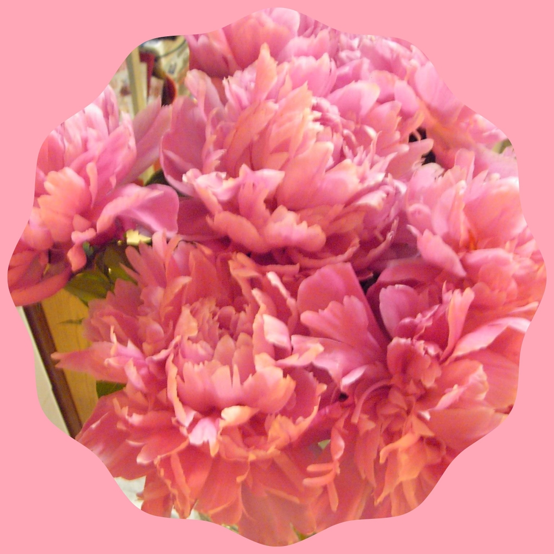 PEONIES IN SHAPE FRAME.jpg