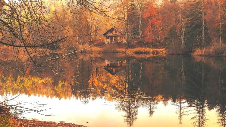 autumn cabin -- 12019 -- PX
