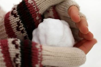snowball in hands -- pub dom -- px