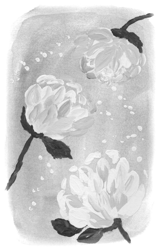 PEONIES ON BLUE SOFT EDGE - smaller B & W