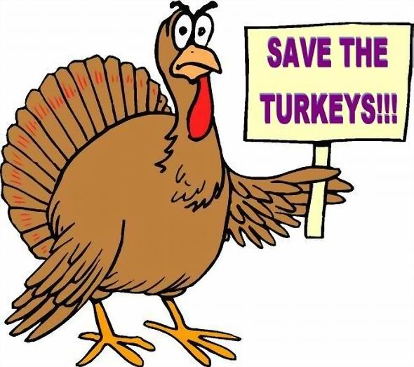 TURKEY WITH SIGN - SAVE TURKEYS
