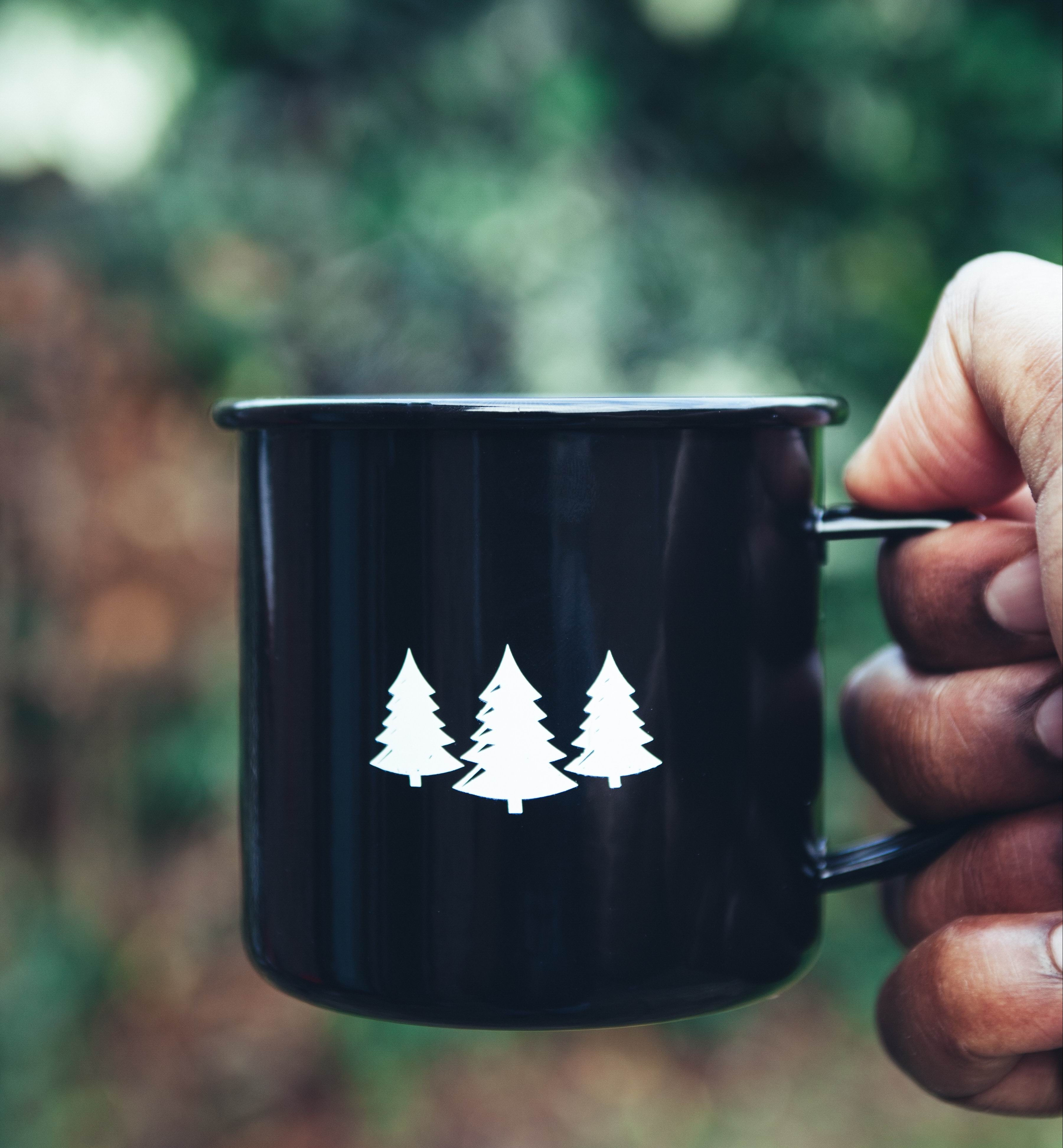 CUP W. CHRISTMAS TREES - Photo by Clem Onojeghuo on Unsplash