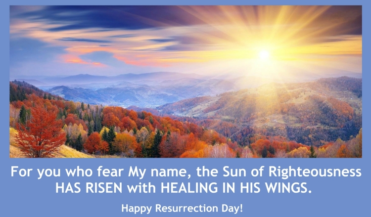 SUNRISE EASTER CARD, 2020