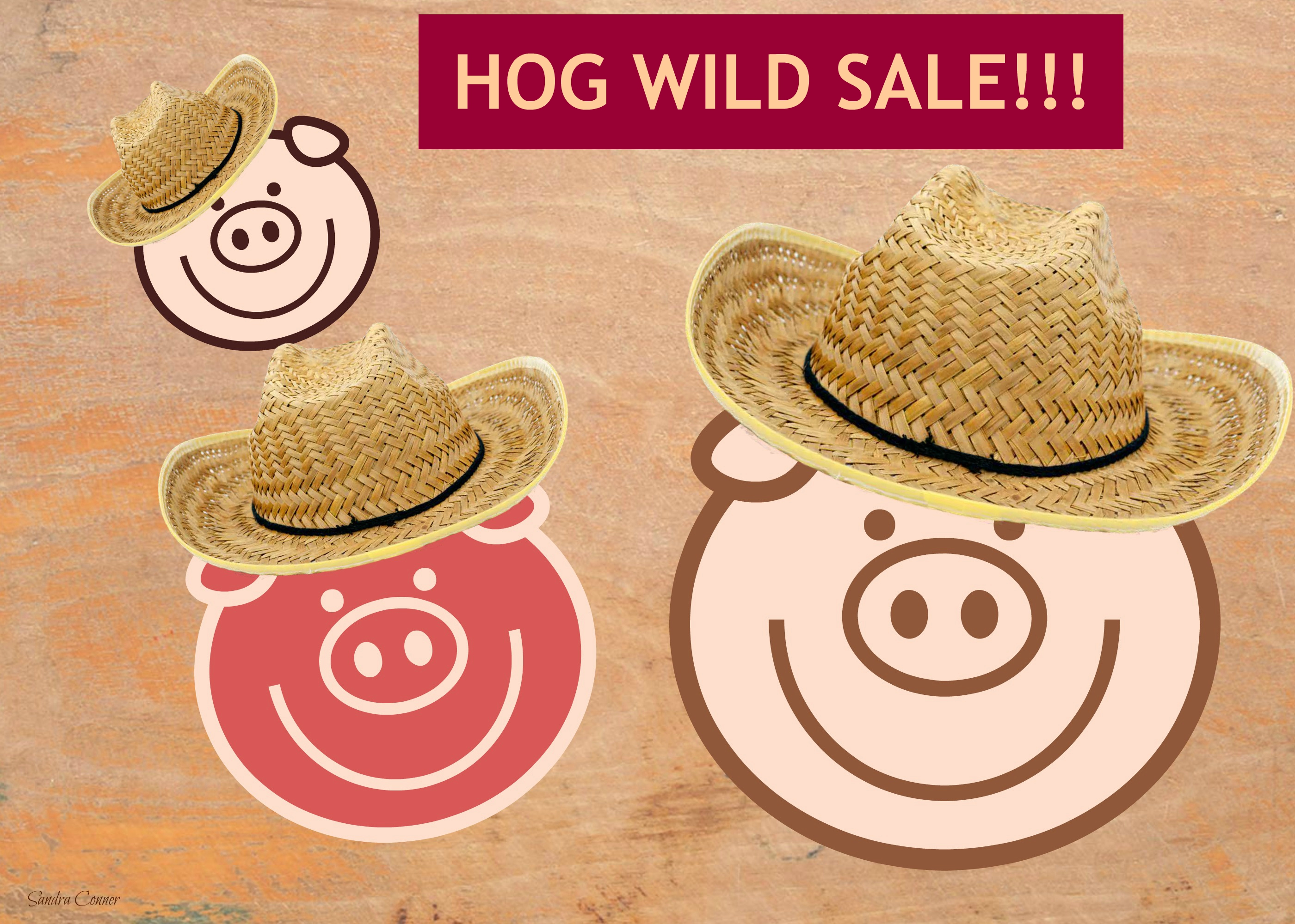 THREE PIGS WITH SALE SIGN