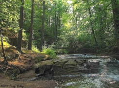 TERRY'S PIC - PERRY CREEK